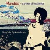 Mandisa: A Tribute to My Mother de Dr Nolutshungu Nomonde