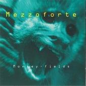 Monkey Fields van Mezzoforte