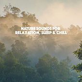 Nature Sounds for Relaxation, Sleep & Chill de Various Artists