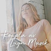 Koppla av - Lugn musik by Various Artists