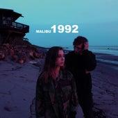 Malibu 1992 by Austin Ward
