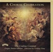 A Choral Celebration de Various Artists