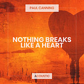 Nothing Breaks Like a Heart (Acoustic) de Paul Canning