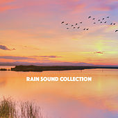 Rain Sound Collection by Various Artists