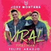 Viral Pisadinha de Joey Montana & Felipe Araújo