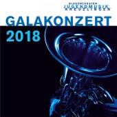 Galakonzert 2018 (Live) by Jugendmusik Kreuzlingen