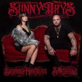 Sunny Days by Struggle Jennings