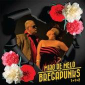 1 + 1 = 2 de Miro de Melo & Os Bregapunks