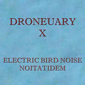 Noitatidem by Electric Bird Noise