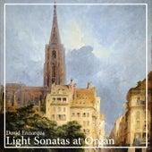 Light Sonatas at Organ by David Ennarqua