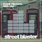 Ibiza Vibe de Frank Delgado
