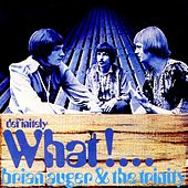 Definitely What! von Brian Auger