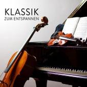 Klassik zum Entspannen de Various Artists