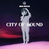 City of Sound von Big Wild