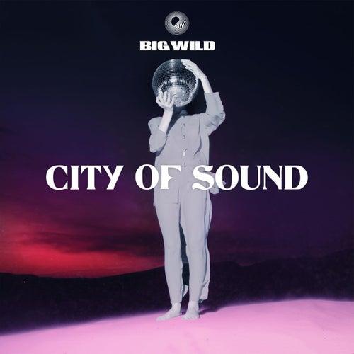 City of Sound by Big Wild