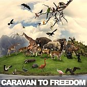 Caravan To Freedom by Various Artists