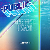 One That I Want (Acoustic) von The Public