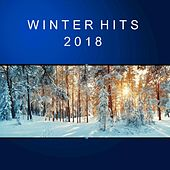 Winter Hits 2018 von Various Artists