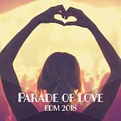 Parade of Love: EDM 2018 von Various Artists