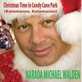 Christmas Time in Candycane Park (Kalamazoo, Kalamazoo) de Narada Michael Walden