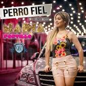 Perro Fiel by Nadia Portillo