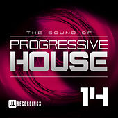 The Sound Of Progressive House, Vol. 14 - EP by Various Artists