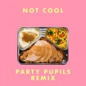 Not Cool (Party Pupils Remix) von More Giraffes