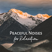 Peaceful Noises for Relaxation de Nature Sounds Artists