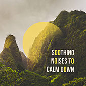 Soothing Noises to Calm Down de Nature Sound Collection