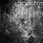 The Grey by Spectre