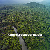 Natural Sounds Of Nature de Various Artists