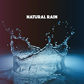 Natural Rain by Various Artists