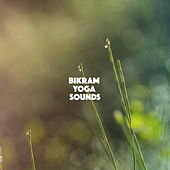 Bikram Yoga Sounds by Various Artists