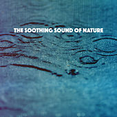 The Soothing Sound of Nature by Various Artists