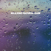 Relaxing Natural Rain by Various Artists