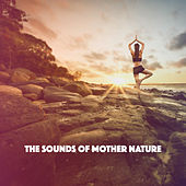 The Sounds Of Mother Nature de Various Artists