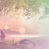 Deep Sounds Of Nature de Various Artists