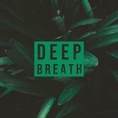 Deep Breath von Chillout Fusion