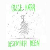Desember regn by Gisle Harr
