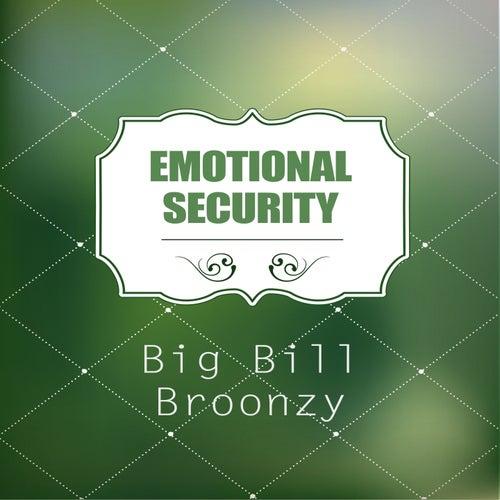 Emotional Security de Big Bill Broonzy