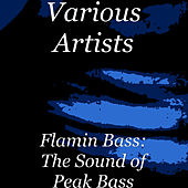 Flamin Bass: The Sound of Peak Bass by Various Artists
