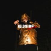 Golden Boy (Remix) by Tom & Collins