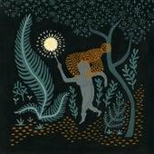 Wilderness by Susanna