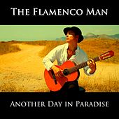 Another Day in Paradise de The Flamenco Man
