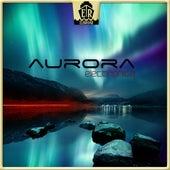 Aurora Electronica von Jens Buchert