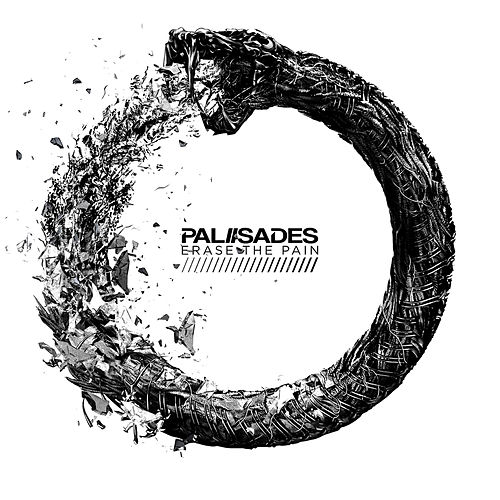 Erase The Pain by Palisades