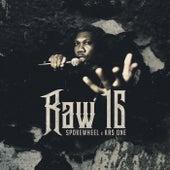 Raw 16 de Spokewheel