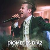Homenaje a Diomedes Díaz (En Vivo) de El Gran Martín Elias