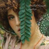 Singeleza (Para o Mundo Colorir) de Camilla Farias