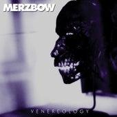 Slave New Desart by Merzbow